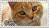Cats stamp by Tollerka