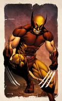 Wolverine SNIKT! by spidermanfan2099