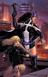 Black Canary and Huntress by spidermanfan2099