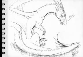 free sketch 3 - Shaori by axe-ql