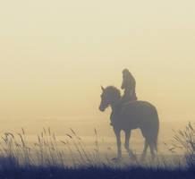 horse by isidasontz