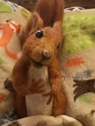 Cute Red Squirrel by KassieStoryKai
