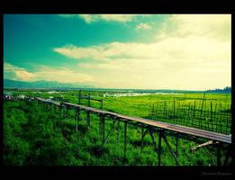 The Bridge by chrishon