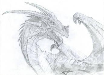 Dragon by Erodon