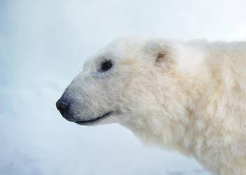 SCULPTURE Polar Bear close up by pixiwillow
