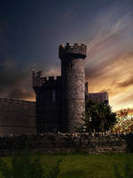 Cork Castle by CorneliaMladenova