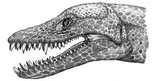 Elasmosaurus by dewlap