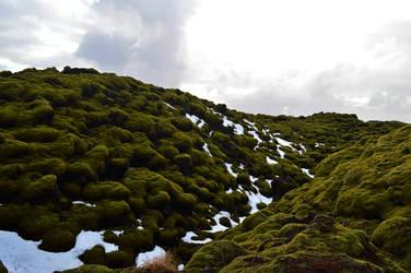 Green Lava by stefanialucia