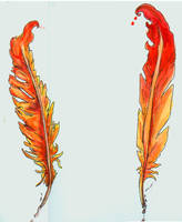 Phoniex Feather Designs by intrepidThrough