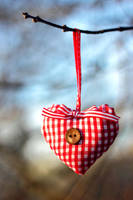 Heart by panna-cotta