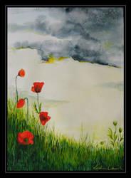 summer meadows by koloranek