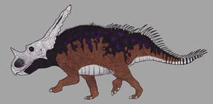 Chasmosaurus belli (male) by TheMorlock