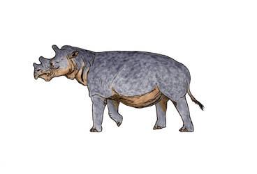 Uintatherium by TheMorlock