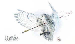 Unwise, Owl shot with an arrow drawing by mezwik