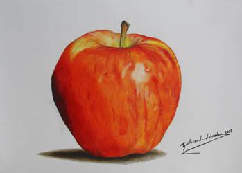 Apple (Malus pumila) by GuillermoLabrador