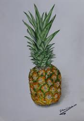 Pineapple (Ananas Comosus) by GuillermoLabrador