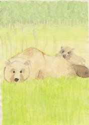 some bears by megling-duck
