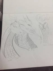 Dragon Sketches by lionkinglover33