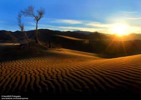 Hemmat abad Desert by HamidSHS
