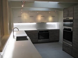 Kitchen Renovation Done by Platycerium