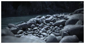 River Rock by Platycerium