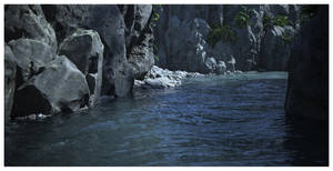 River and Rock by Platycerium