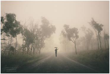 Serenity by InfuzedMedia