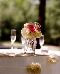 Table Setting by NikonChrome