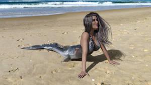 Aurore Mermaid Beach 3 by sky50783
