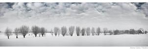 winter 6 by Morlen
