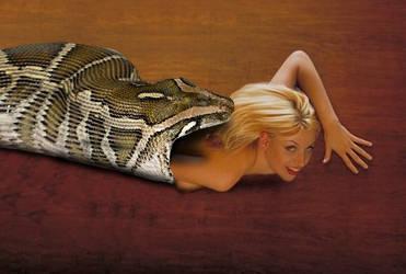 Snake Vore 657 by andromeda111