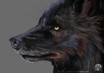 Wolf-speedpaint by LenaMAD