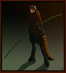 Red Panda Ninja by AkaiPanda
