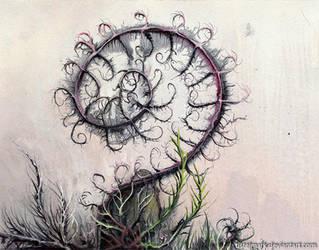 Spiral plant by Tistelmark