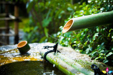 Bamboo's water by lilmarie