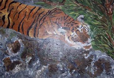 Jeune tigre by Midori-ossan