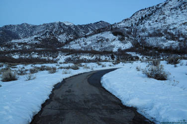 Day 16- The Mountains by Moohoodles