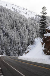 Day 23- The Canyon Road by Moohoodles
