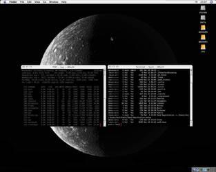 Mac OS X Tiger by tru3fel