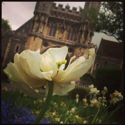 Canterbury by todo-mahem