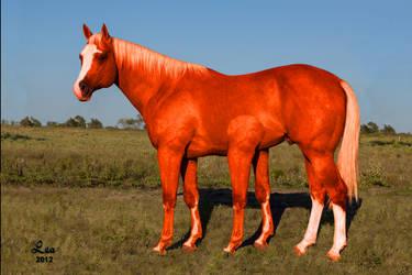 FTL: Six-legged horse-like animal by Twilightwindwaker777