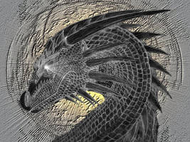 Dragons by dragonblaze2000