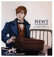 Newt Scamander by spider999now