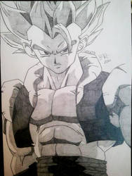 Gogeta - Reupload 2010 by obsessive-fan-girl