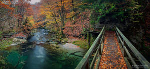 A bridge through autumn by Lidija-Lolic