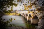 Misty autumn by Lidija-Lolic