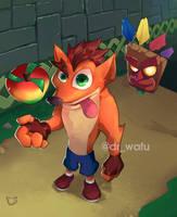 Crash Bandicoot by DrWafu