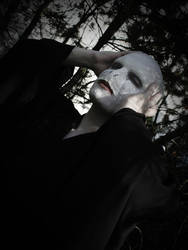 Hapsu Cosplay - Lord Voldemort by Hapsu-cosplay