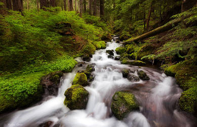 Snoqualmie springs by dead-star
