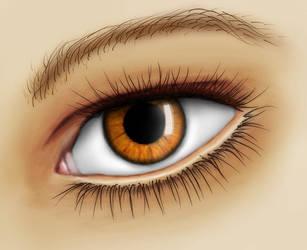 eye study by cnv